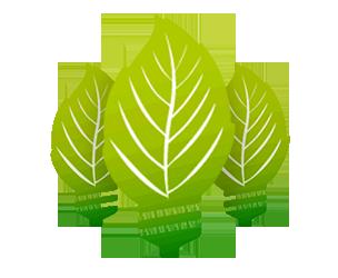 Videi draudzīgā enerģija